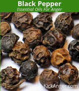 Black Pepper - Essential Oils For Anger