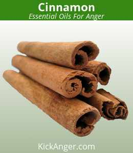 Cinnamon - Essential Oils For Anger