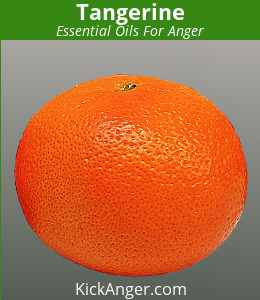 Tangerine - Essential Oils For Anger